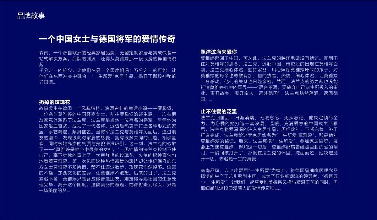 森南公司品牌形象/宣传画册/LOGO设计8