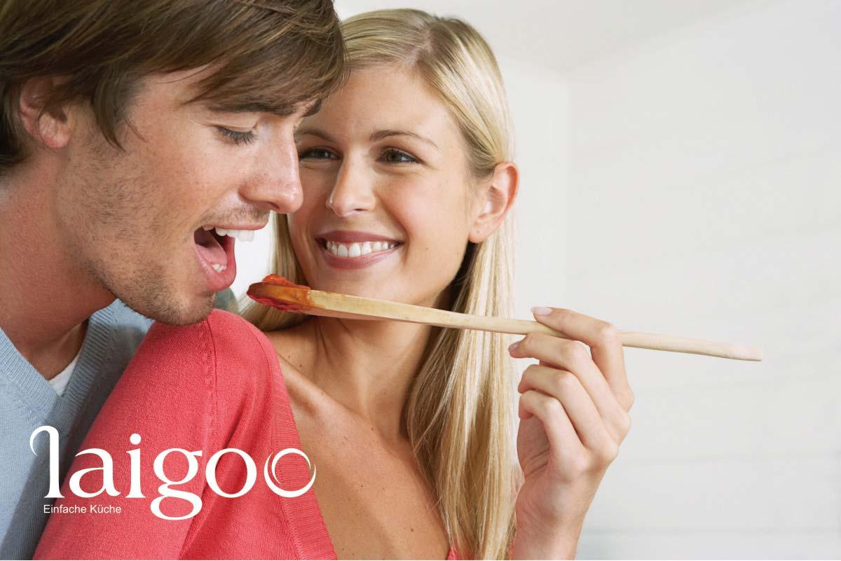 德国莱谷电气品牌形象/宣传画册/LOGO VI设计