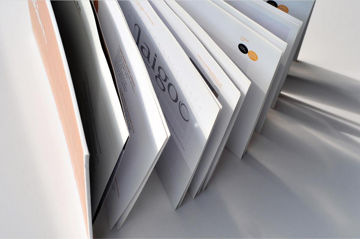 德国莱谷电气品牌形象/宣传画册/LOGO VI设计5