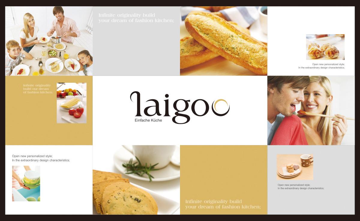 德国莱谷电气品牌形象/宣传画册/LOGO VI设计13