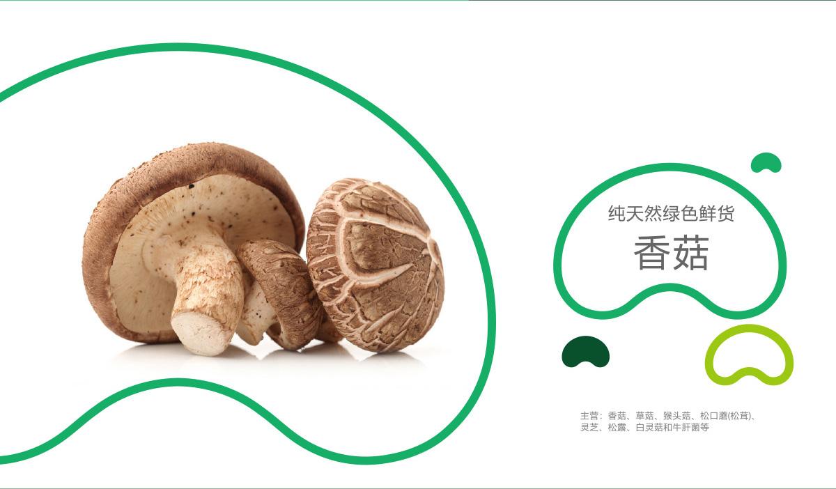 菌菇粮品牌策划/VI设计/LOGO设计效果图4